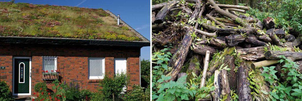 Holz mit Dachbegrünung und ein Totholzhaufen für Kleintiere