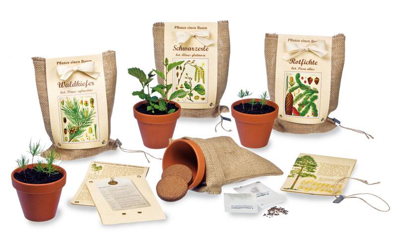 pflanze einen baum florapresenta nat rlich werben werbemittel. Black Bedroom Furniture Sets. Home Design Ideas