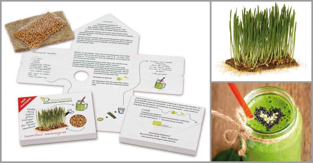 Superfood Weizengras Präsentverpackung mit gewachsenem Weizengras und grünem Smoothie