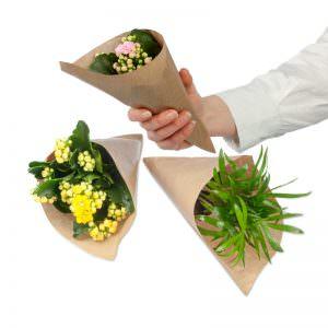 Blumen in der Spitztüte