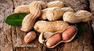 Erdnüsse auf Holztisch