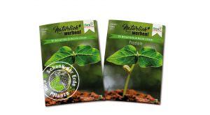 Link zum Online Katalog und zur Online Preisliste von Florapresenta