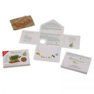 Superfood Weizengras mit Greenpad und Verpackung