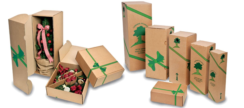 Verpackungen florapresenta nat rlich werben werbemittel for Pflanzenversand katalog
